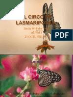 El Circo de Lasmariposas