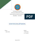 esfingolípidos.docx