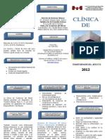 Clinica Afectivos 2012