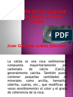 Caliza Juan Gerardo Juarez Sanchez Oxido