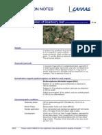 F-11_arctostaphylos_uva_ursi HPTLC Identification of Bearberry leaf.pdf