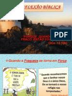 Slides Reflexobblica 110930072834 Phpapp01