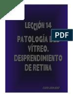 14_VITREO_RETINA_III.pdf