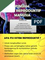 SISTEM REPRODUKTIF MANUSIA.pptx