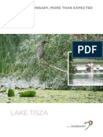 Lake TISZA 2013