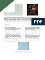 opals.pdf