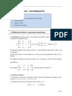 TEMA 4. Matrices y Determinantes