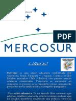 mercosur-120424113429-phpapp01