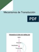 Mecanismos de Transducción