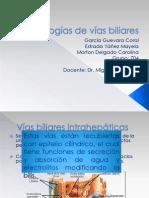 Patologías de vías biliares
