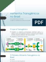 Alimentos Transgênicos no Brasil