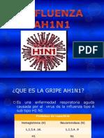 Presentación AH1N1 2013