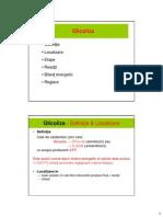 Glicoliza.Gluconeogeneza