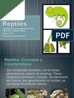 Trabajo de Cta Reptiles