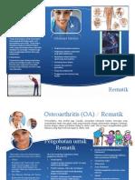 leaflet rematik.pdf