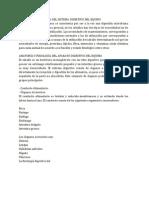 ANATOMÍA Y FISIOLOGÍA DEL SISTEMA DIGESTIVO DEL EQUINO