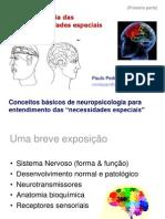 1 Neuropsi Deficiencias C Basicos