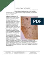 os_antigos_mapas_da_antartida.pdf