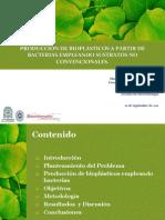 PRODUCCIÓN DE BIOPLÁSTICOS A PARTIR DE BACTERIAS EMPLEANDO SUSTRATOS NO CONVENCIONALES. Mariana Cardona