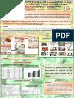Poster de Extraccion de Aceite Esencial