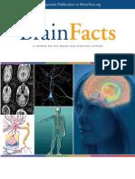 Brain Facts book.pdf