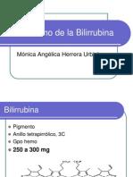 metabolismo-bilirrubina