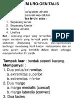 42059333-Sistem-Uro-Genital.ppt