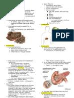 • Accessory Organs