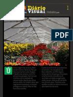 Diário Visual I - Serra dos Órgãos