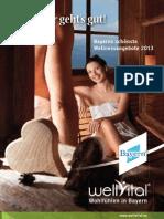 wv_beilage_2012_130123.pdf