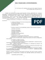 Prezentul proiect va Г®ncerca sДѓ  analizeze din punct de vedere financiar  activitatea                         _1