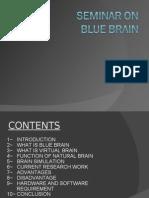 22599697-Blue-Brain.pdf