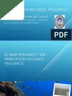 1° seminario de recursos  pesqueros 1
