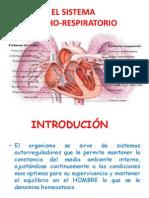 el sistema cardio-respiratorio