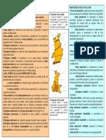 SECTIUNEA 4 VISCEROCRANIUL PARTEA II.pdf