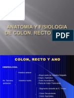 Ana Colon, Recto y Ano.