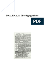2-DNA-RNA-