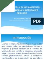 PONENCIA RED IBEROAMERICANA 2010 1.pps