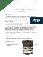 Diagnosticare Labirator 1