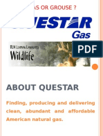 case analysis gas or grouse