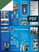 EGF leaflet.pdf