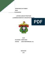 laporan golongan MIC.docx