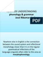 Phonology & Grammar