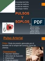 Seminario de Pulso