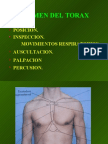 semiologia torax