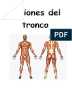 Lesiones de Tronco