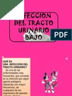 Diapositiva de Infeccion Del Tracto Urinario