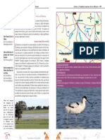 07. Ruta 1 Llanos y Complejo Lagunar de La Albuera