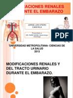 Alteraciones Renales Durante El Embarazo (Ivu)