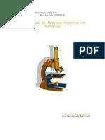 Identificação de Moléculas Orgânicas em Alimentos (Relatório)